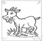 A minha pequena cabra