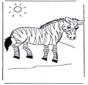 A minha pequena zebra