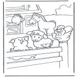 Animais - A quinta
