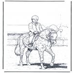 Animais - Adestramento