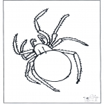 Animais - Aranha