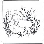 Tema - Bebé no cesto