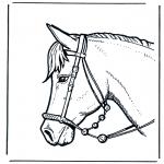 Animais - Cabeça de cavalo 2