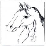 Animais - Cabeça de cavalo 3
