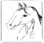 Cabeça de cavalo 3