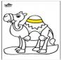 Camelo 2