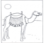 Camelo ao pôr do sol