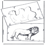Animais - Camelo e leão