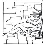Animais - Canguru 1