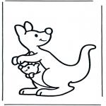 Animais - Canguru 2