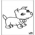 Animais - Cão 6