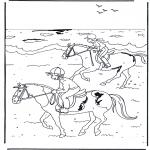 Animais - Cavalgada 2