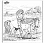 Cavalgada 5