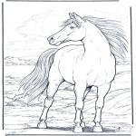 Animais - Cavalo ao vento