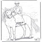 Animais - Cavalo com senhora