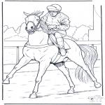 Animais - Cavalo e jockey