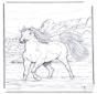 Cavalo no rio
