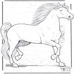 Animais - Cavalos 3