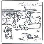 Animais - Cavalos