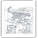 Animais - Chitas