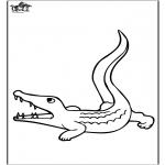 Animais - Crocodilo 3