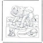 Animais - Elefante 1
