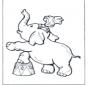 Elefante do circo