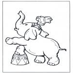 Animais - Elefante no circo