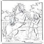 Animais - Elevando o cavalo