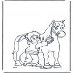Animais - Escovando o cavalo