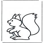 Animais - Esquilo 1