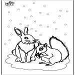 Inverno - Esquilo e Coelho