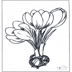 Todos os tipos de - Flores 1