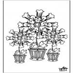 Todos os tipos de - Flores 5