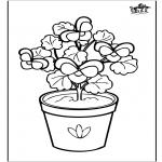 Todos os tipos de - Flores 6