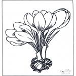 Todos os tipos de - Flores da primavera 1