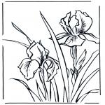 Todos os tipos de - Flores