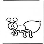 Animais - Formiga