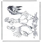 Animais - Galo e galinhas