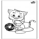 Animais - Gato 5