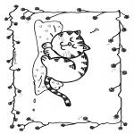Animais - Gato dorminhoco