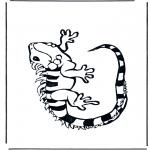 Animais - Iguana