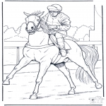 Todos os tipos de - Jockey a cavalo
