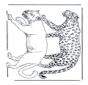 Leão e leopardo