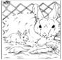 Liga pontos - coelho