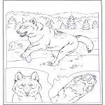 Animais - Lobo
