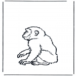 Animais - Macaco 2