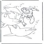 Animais - Mergulha com os golfinhos