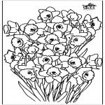 Todos os tipos de - Narciso