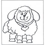 Animais - Ovelha